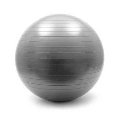Bola de Ginástica Ø65cm Cinza - (WOZ-13)